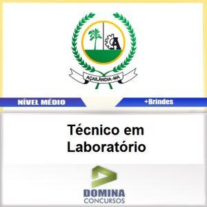 Apostila Açailândia MA 2017 Técnico em Laboratório