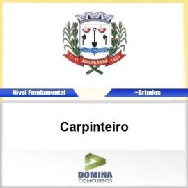 Apostila Anaurilândia MS 2017 Carpinteiro PDF