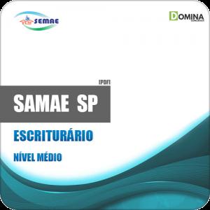 Apostila SEMAE Piracicaba SP 2019 Escriturário