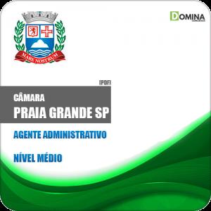 Apostila Câmara Praia Grande SP 2019 Agente Administrativo