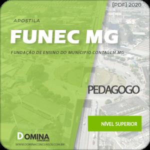 Apostila Concurso FUNEC Contagem MG 2020 Pedagogo