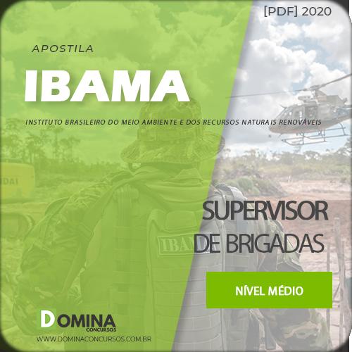 Apostila Concurso IBAMA 2020 Supervisor de Brigadas