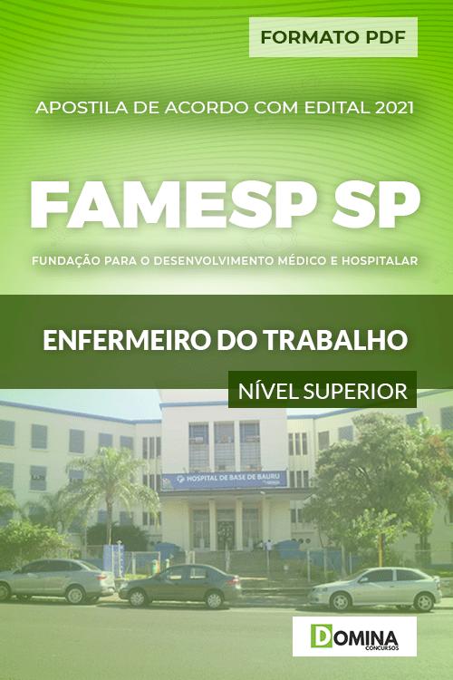 Apostila Seletivo FAMESP SP 2021 Enfermeiro do Trabalho