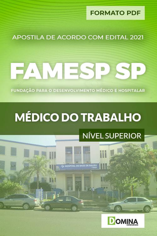 Apostila Seletivo FAMESP SP 2021 Médico do Trabalho