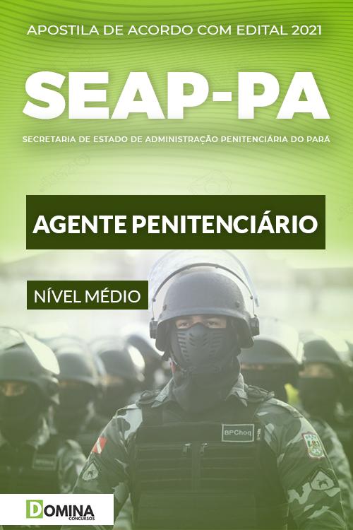 Apostila Concurso Público SEAP PA 2021 Agente Penitenciário