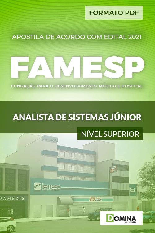 Apostila Seletivo FAMESP 2021 Analista de Sistemas Júnior