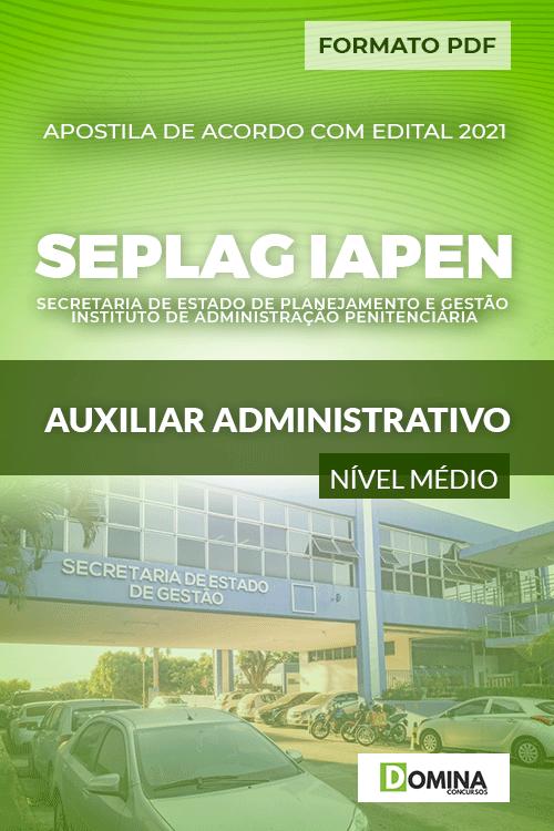 Apostila Seletivo SEPLAG IAPEN 2021 Auxiliar Administrativo