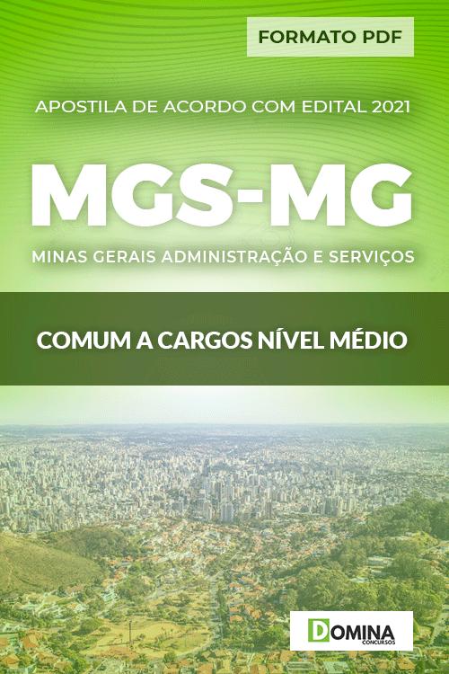 Apostila Seletivo MGS MG 2021 Comum a Cargos Nível Médio